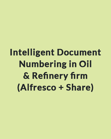 Intelligent Document Numbering in Oil & Refinery firm (Alfresco + Share)